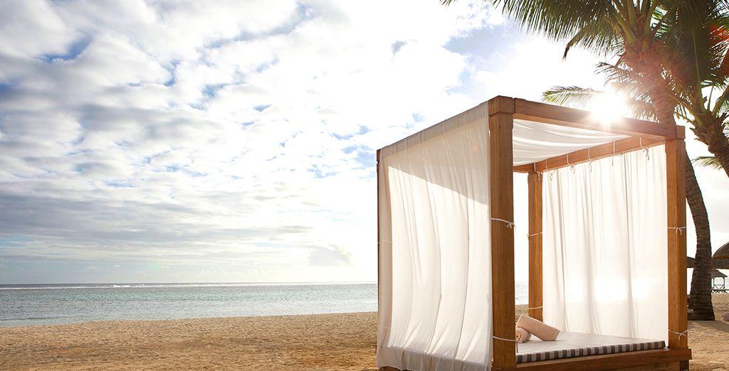 Vivez un rêve éveillé sur l'île Maurice