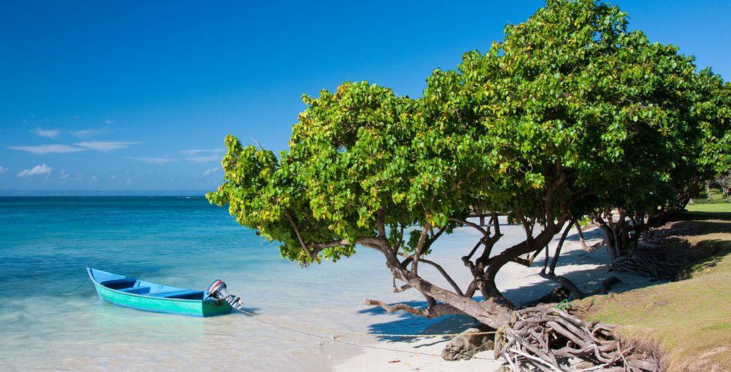 Punta Cana avec Voyage Prive