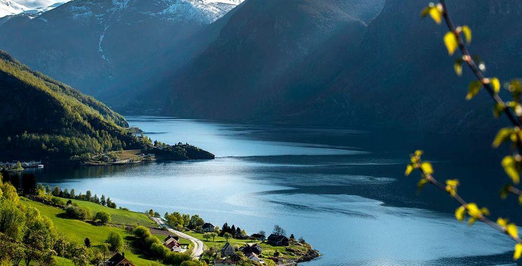 Image result for fiordi norvegesi