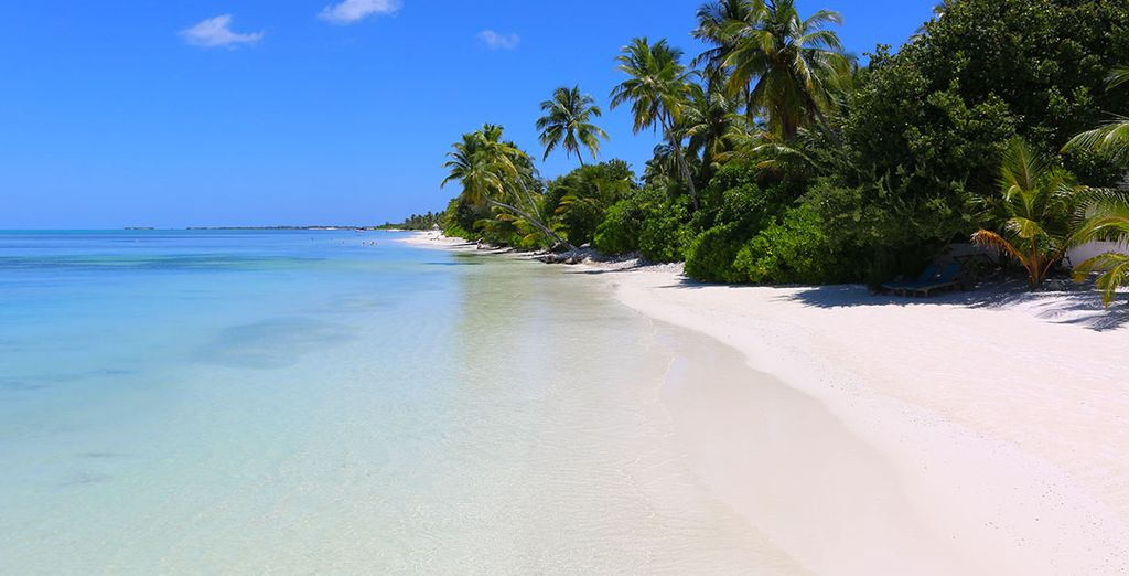 Find vast stretches of white sand