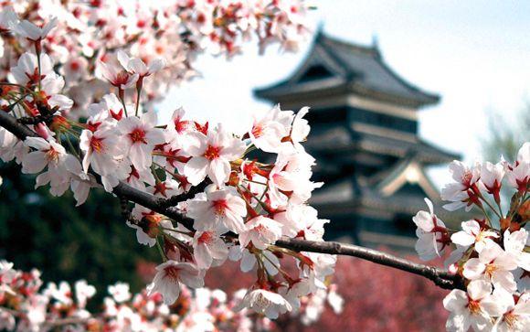 Giappone - Alla scoperta del Giappone