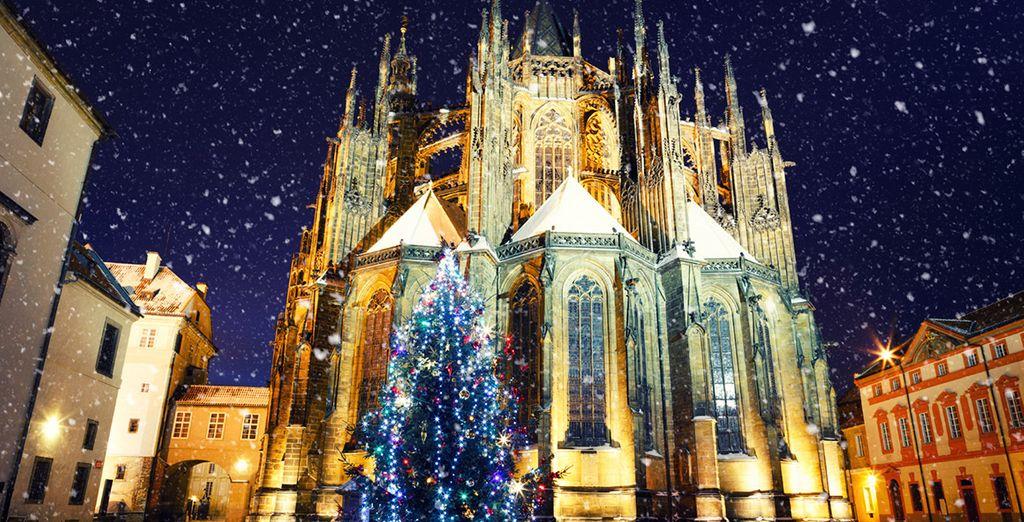 Und vor allem während der Weihnachtsfeiertage werden Sie hier verzaubert