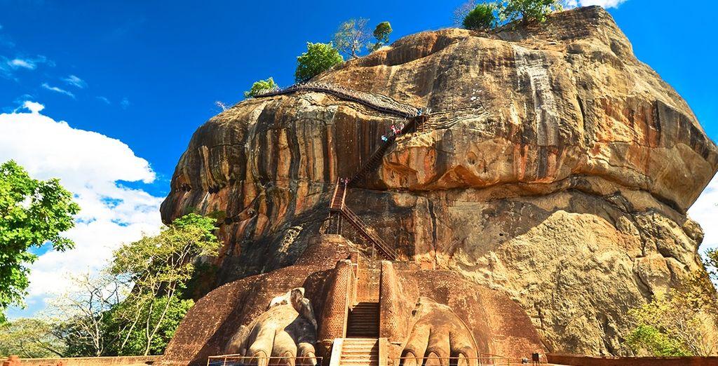 Löwenfelsen - Sri Lanka URlaub