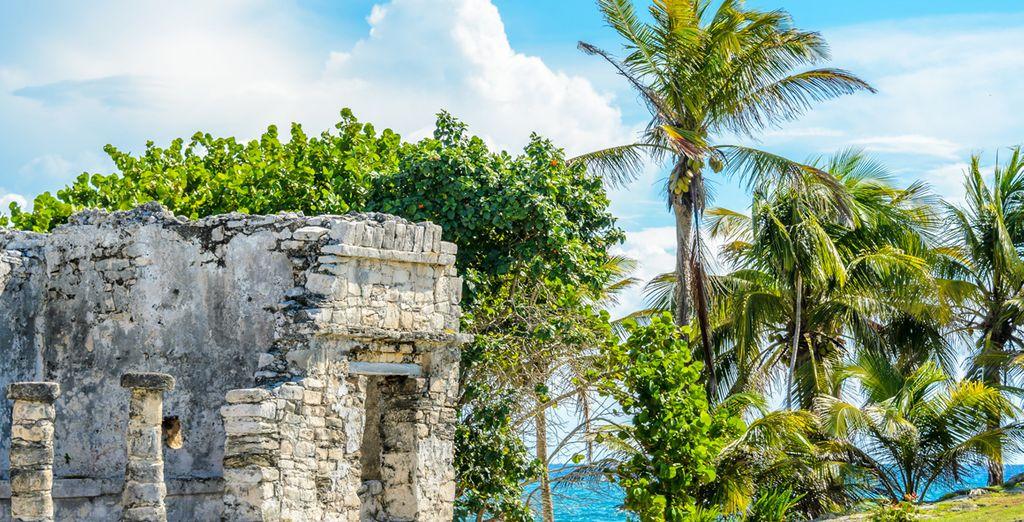 Besuchen Sie die umliegenden Maya Tempel