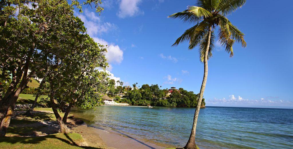 Wir wünschen Ihnen einen schönen Aufenthalt in der Dominikanischen Republik!