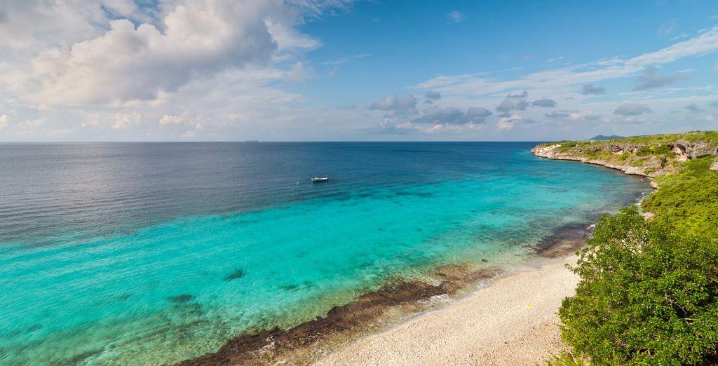Wir nehmen Sie mit nach Bonaire, auf den Niederländischen Antillen!