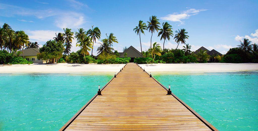 Willkommen im Paradies!