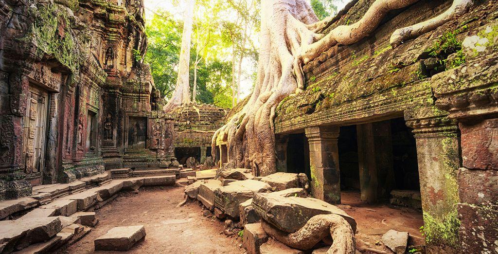Die Angkor Wat Tempel