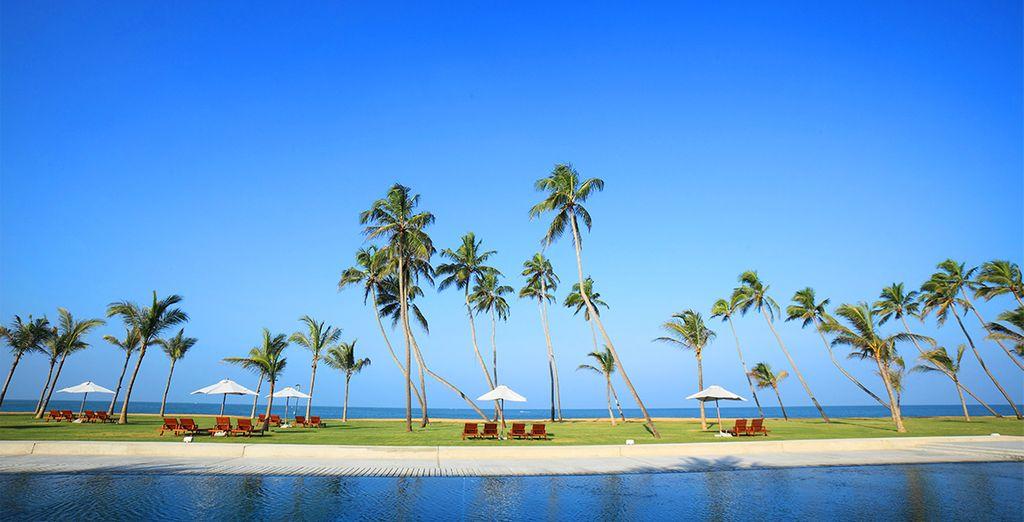 Willkommen auf Sri Lanka!