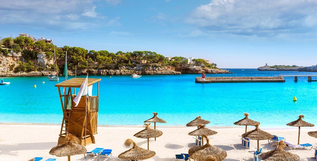 Herzlich willkommen unter der Sonne Mallorcas!