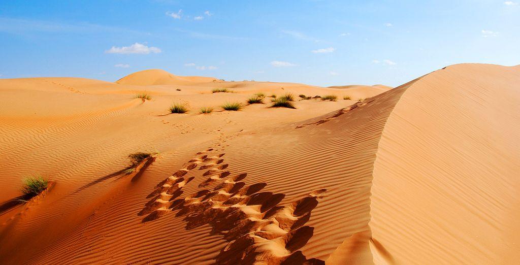 Zwischen Wolkenkratzern und Wüste, werden Sie garantiert begeistert sein