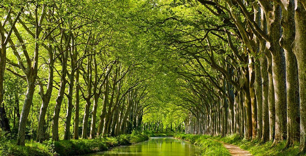 ... auf den Canal du Midi