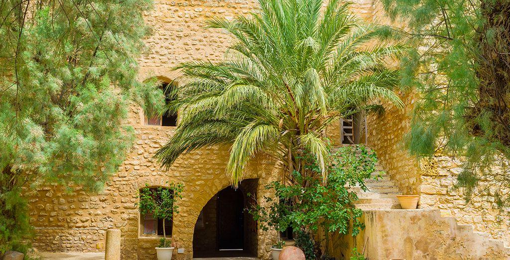 Lernen Sie das wunderschöne historische Zentrum von Hammamet und die Berber-Kultur kennen