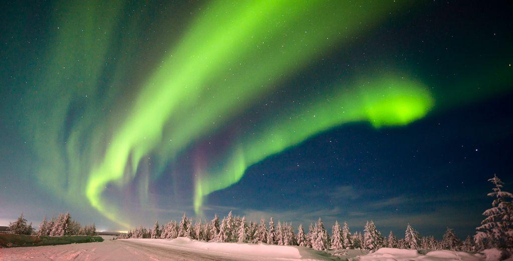 Und haben die Möglichkeit die Nordlichter zu bewundern