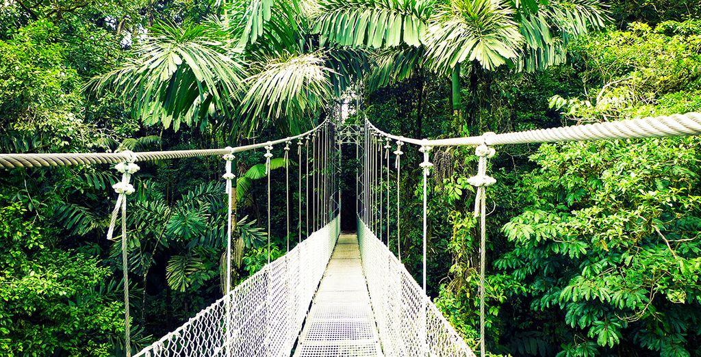 Wir wünschen Ihnen einen schönen Aufenthalt in Costa Rica!