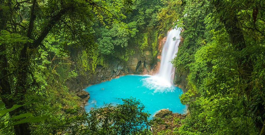 Erleben Sie Natur pur in Costa Rica!