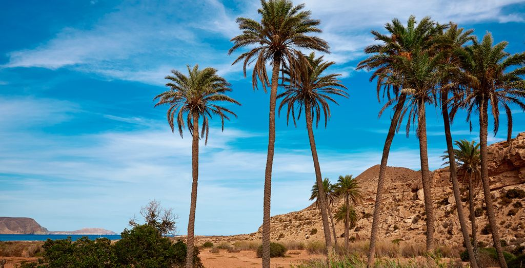 Im sonnigen Andalusien