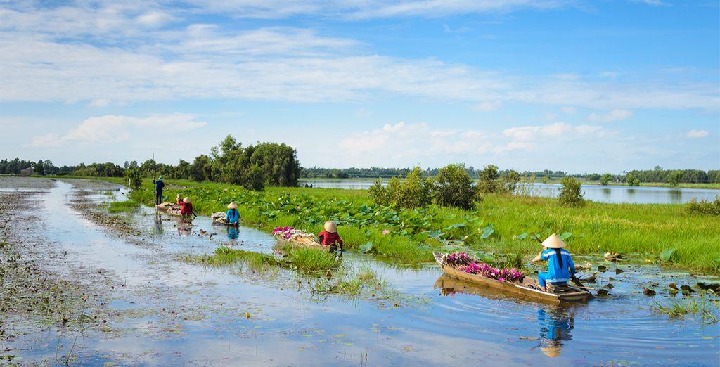 Das Mekong Delta repräsentiert diese Ruhe über dem Wasser
