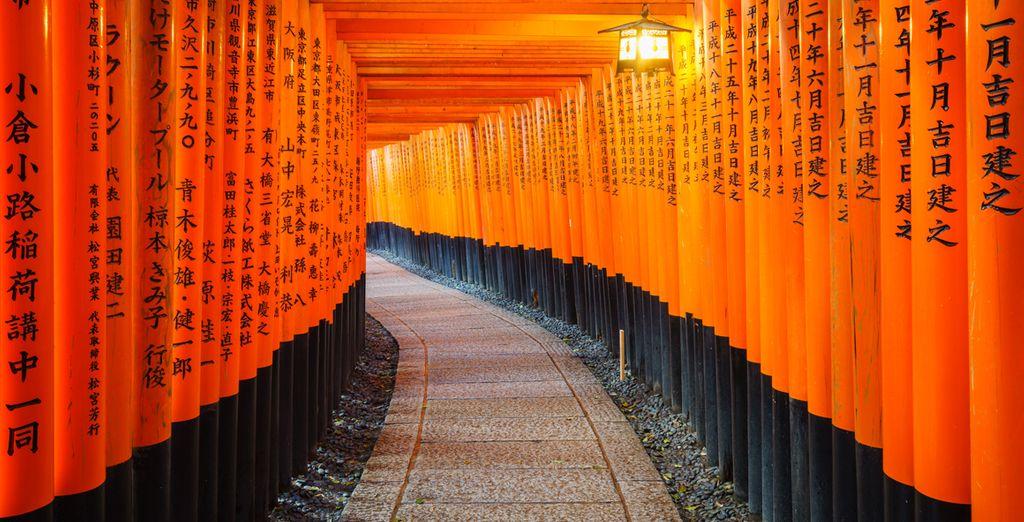 Besichtigen Sie Kyoto