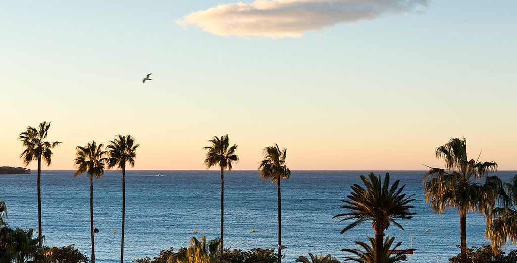 Freuen Sie sich auf sonnige Tage in Cannes