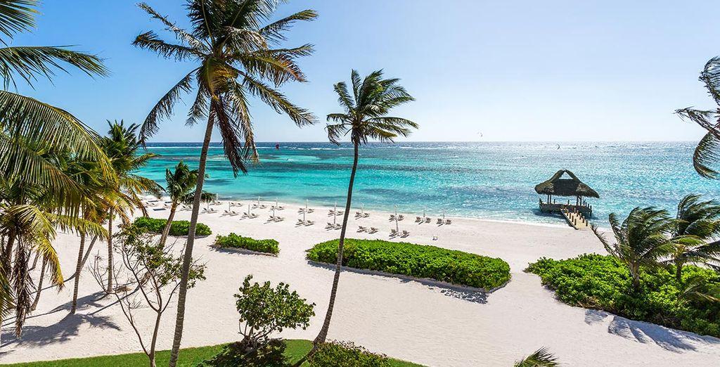 Entdecken Sie Punta Cana