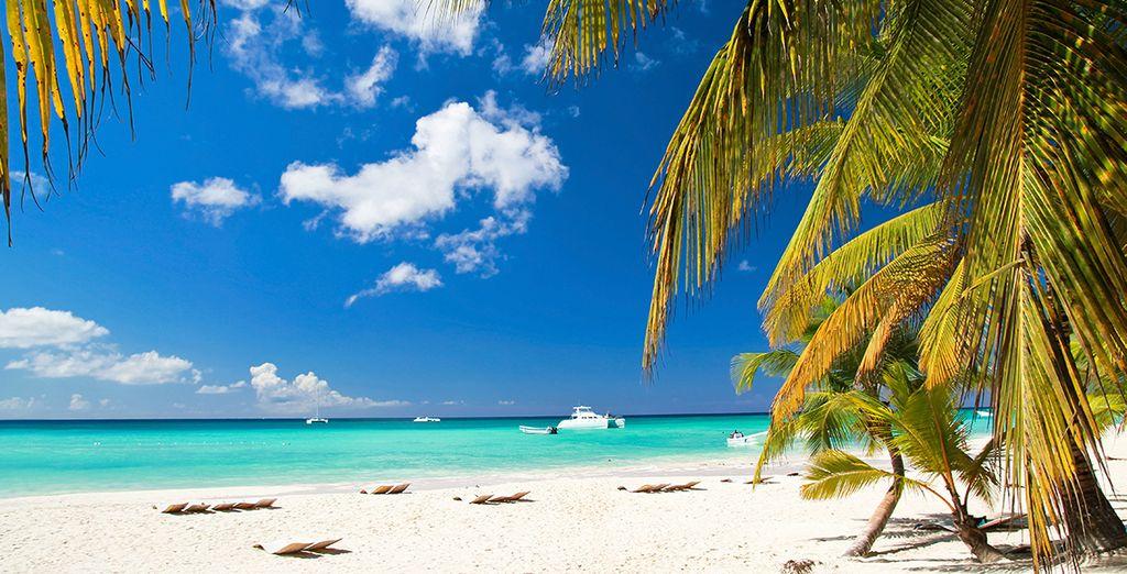Kommen Sie und sonnen Sie sich an den paradiesischen Stränden Kubas