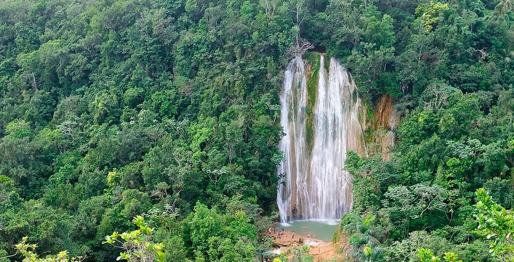 Entdecken Sie Samana in der Dominikanische Republik für einen naturverbundenen Urlaub