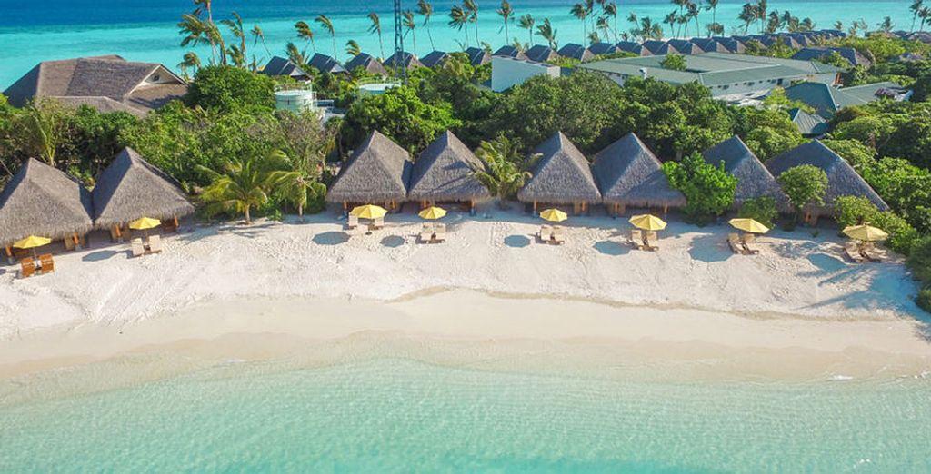 Das von der UNESCO geschützte Baa Atoll beherbergt das Dhigufaru Island Resort