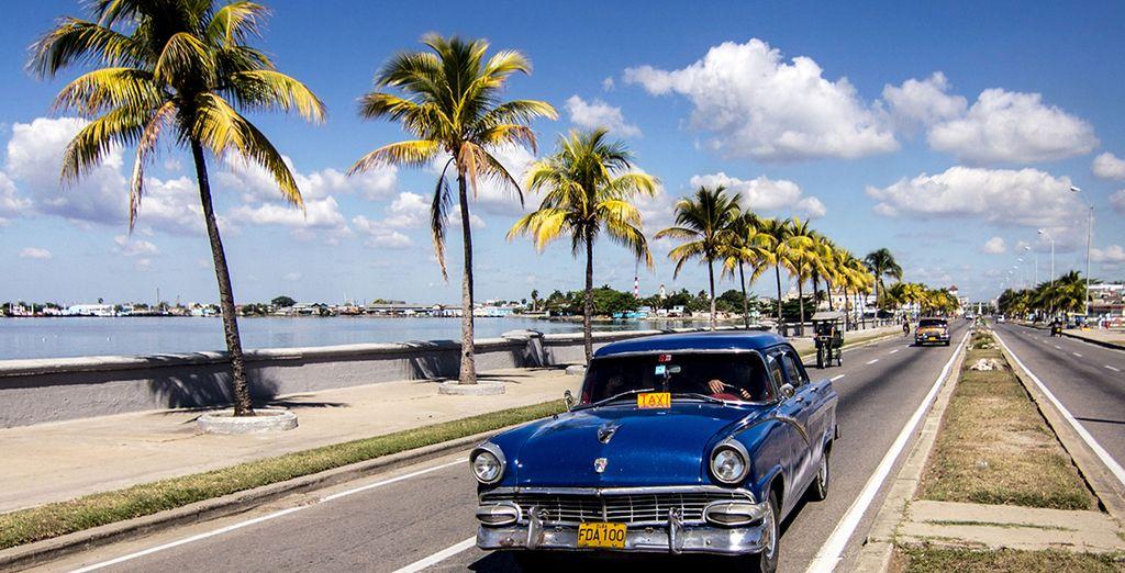Black Friday Die besten Angebote für einen Urlaub in Kuba