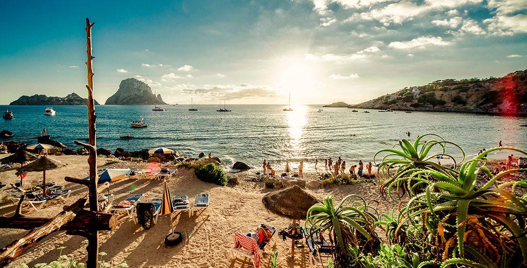 Go-Party auf Ibiza im Mai