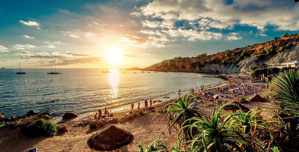 ¡Bienvenido a Ibiza!