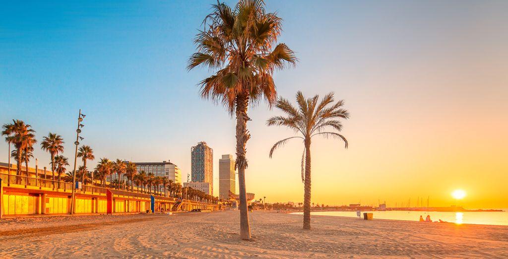 Y la playa de la Barceloneta
