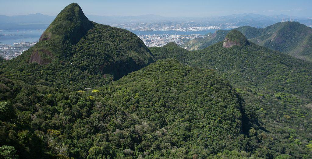 Antes de partir a explorar el Parque Nacional Tijuca