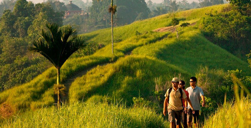 Disfrute del trekking como parte de su estancia