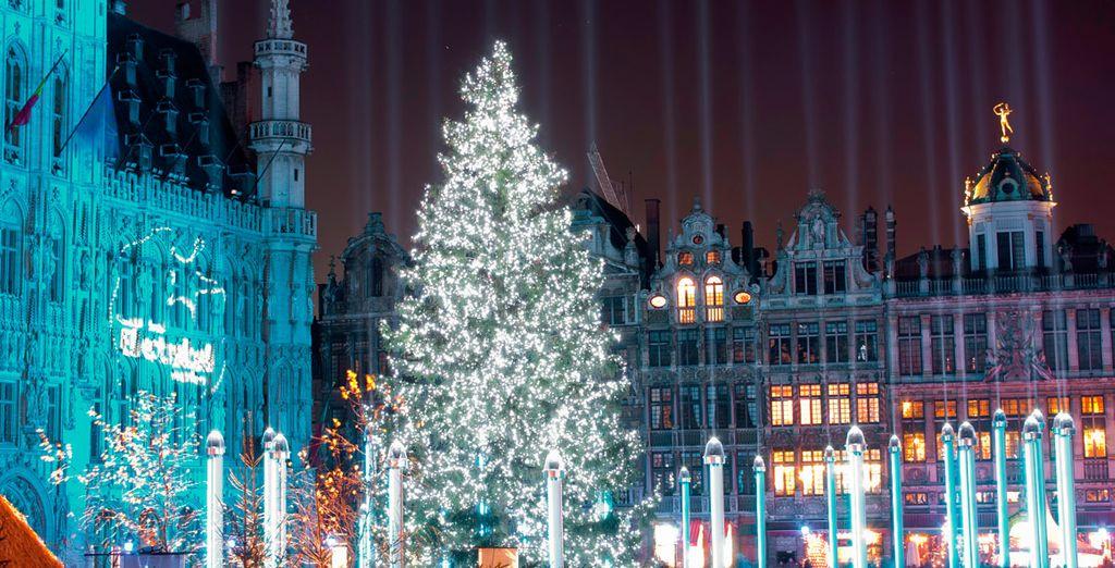 Admire el gran árbol de navidad ubicado en Grand Place