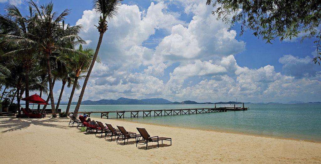 Goce de sus playas tranquilas enfrente del hotel