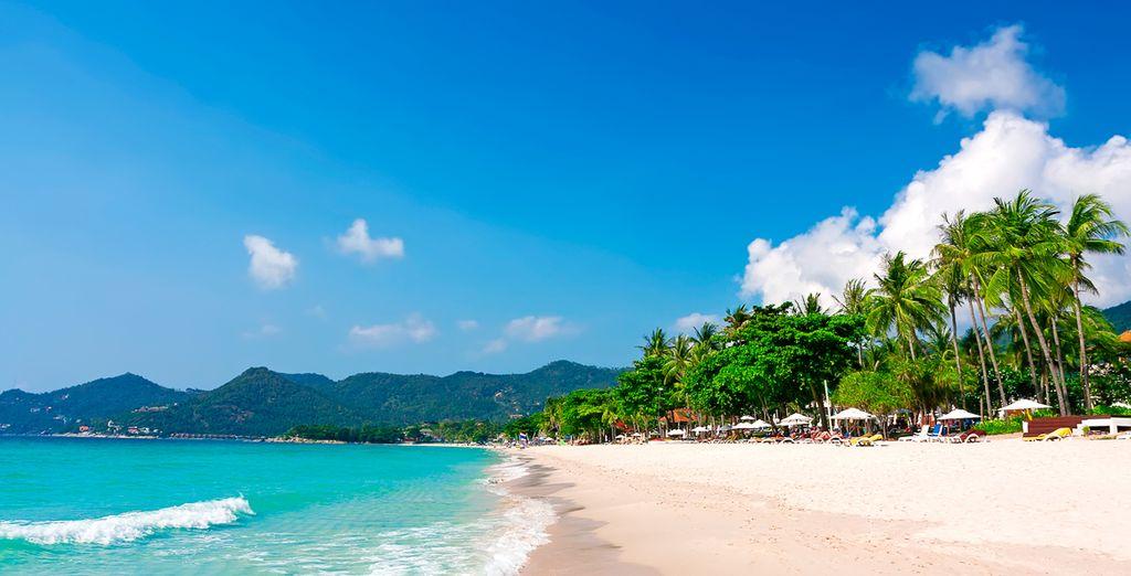Ubicado en la punta de la prístina playa Chaweng de Koh Samui