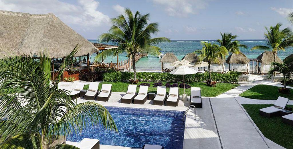 Piscinas, restaurantes, bares y un entorno paradisíaco