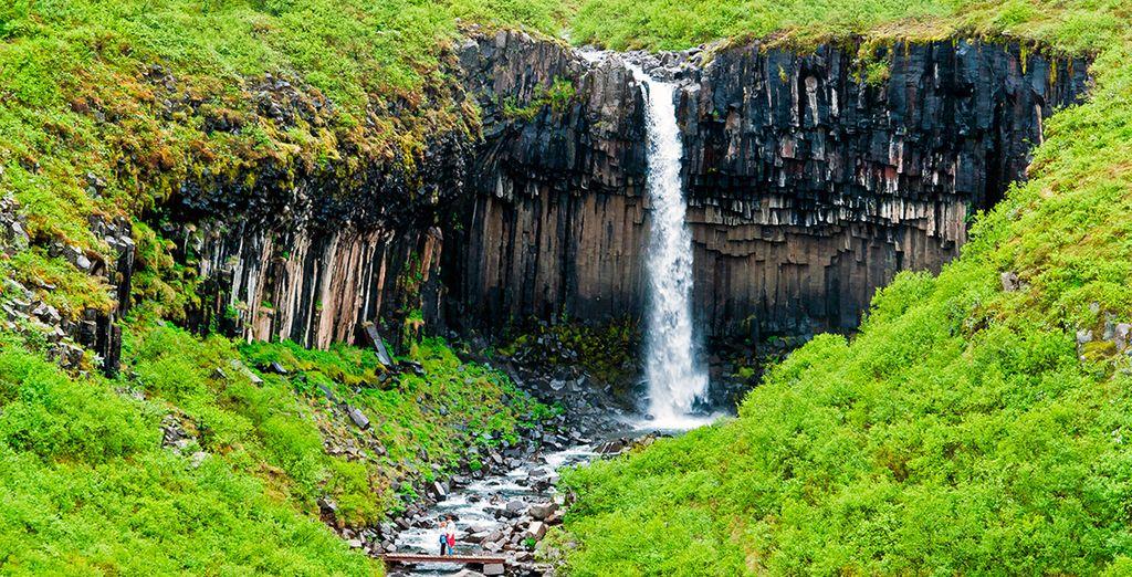 El parque nacional de Skaftafell esconde algunas de las perlas naturales más preciosas de Islandia, como la Cascada Negra, Svartifoss