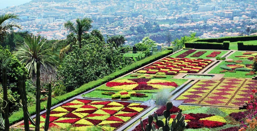 La capital, Funchal, y los jardines botánicos a un paso