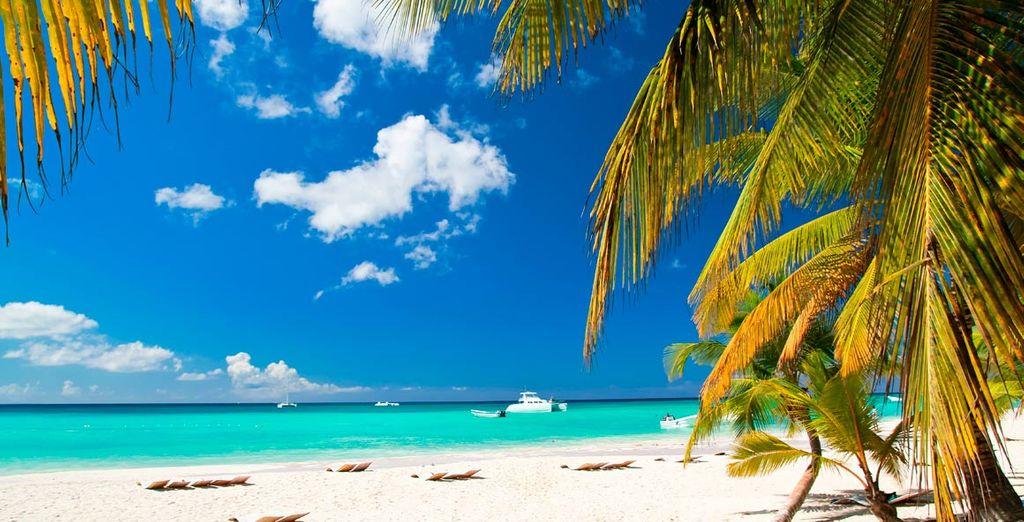Disfrute de playas de ensueño