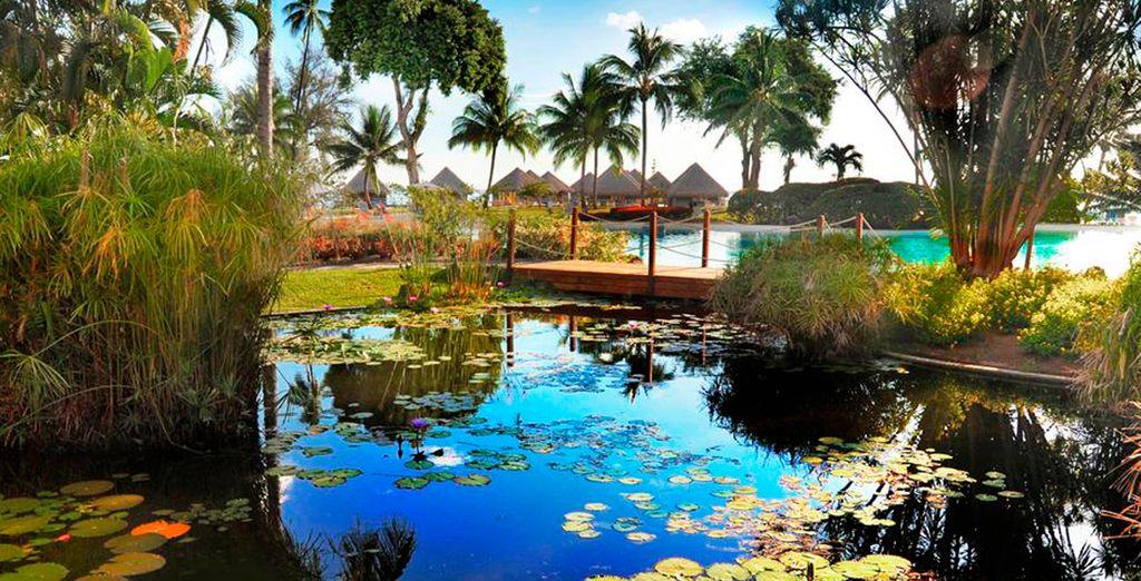 Los fabulosos jardines del Meridien Tahití