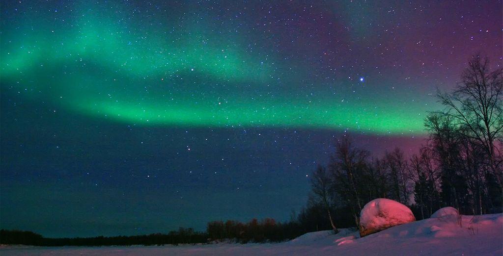Admire la impresionante Aurora Boreal