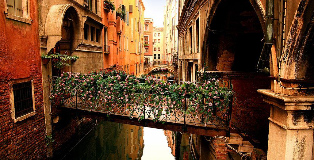 Disfrute de sus bellos canales