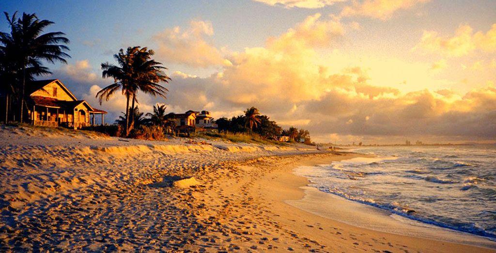 Disfrute de excelentes playas...