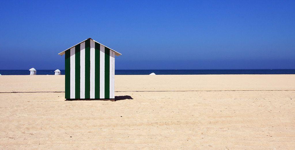 Descubra playas infinitas...
