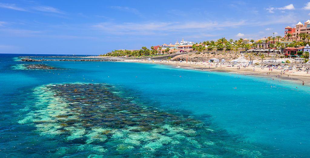 El hotel se encuentra a solo 200 metros de la Playa del Duque