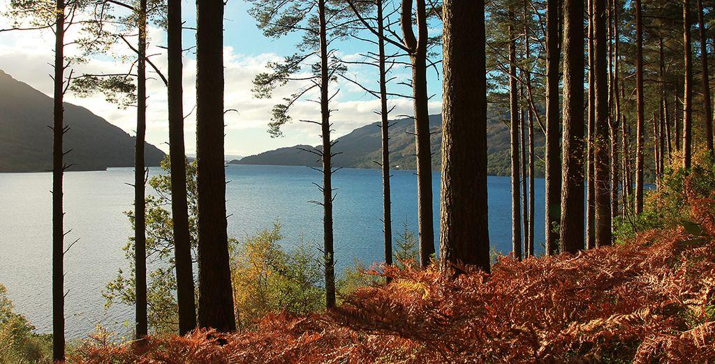 Conozca el Parque Nacional de Loch Lomond