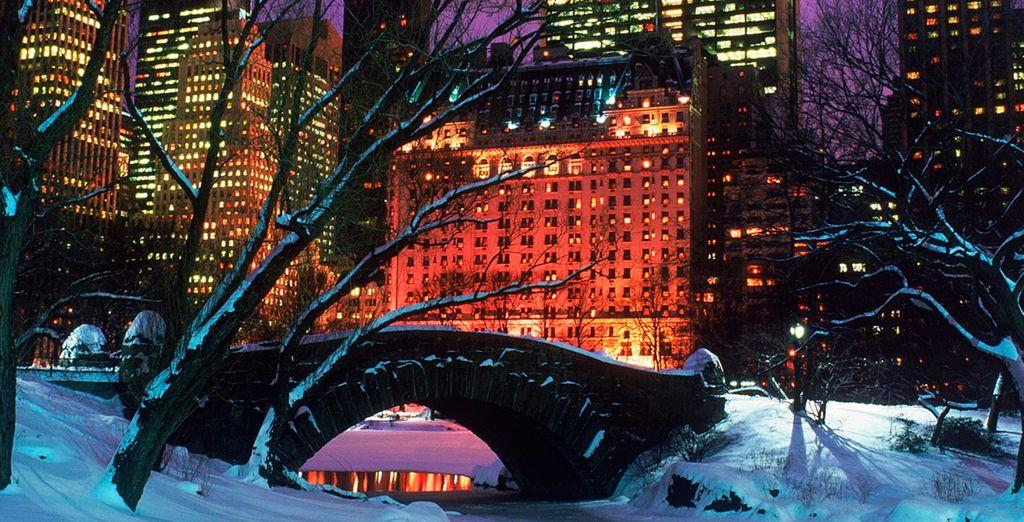 No se puede perder el maravilloso paisaje de Central Park cubierto de nieve