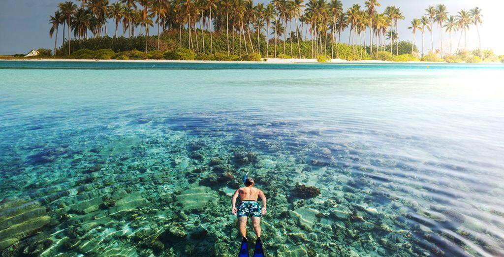 Playas paradisíacas para sus vacaciones